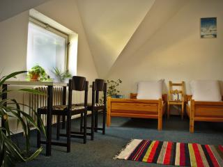 Eco-Villa Flora - Spacious attic & magnificient vi, Prague