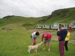 some of our guests feeding the pet lamb