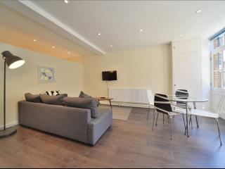 Beautiful Paddington Mews Apartment Hyde Park