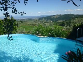APARTMENT WITH PRIVATE GARDEN AND POOL, Florencia