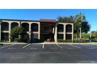 Contemporary condo in a 55+ community, Seminole