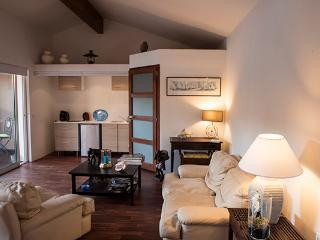 Petit salon, kitchenette et salle d'eau (lavabo, douche et wc), 1canapé cuir 2 places et un fauteuil
