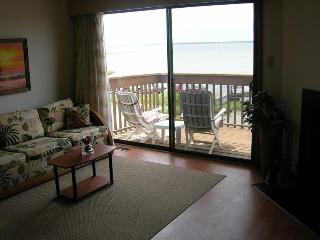 Sunset Landing 2/2 Vacation Rental on the Water!, Ocean City