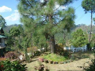 Rose Wood Cottage, Almora