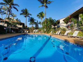 Kihei Bay Vista #C-106 Best Location, Garden View, Sleeps 4, Great Rates!