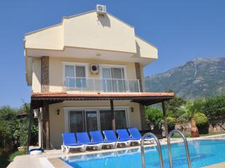 Mountain view villa, Ölüdeniz