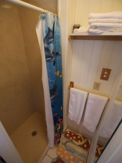 Upper Suite Shower!