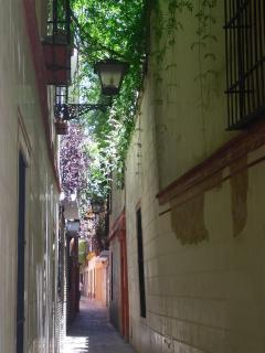 The pedestrian streets around the building: Santa-Cruz area
