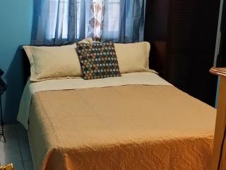 Dominique's JA Unique Budget Pad-sleeps 3/Parking,  accessible to Golf/Beach, Spanish Town