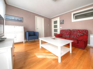 50 m from  Concha Beach + PARKING (optional)+WIFI, San Sebastian - Donostia
