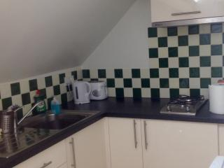 New kitchen with combi/microve oven, fridge, washing machine & all essentials!