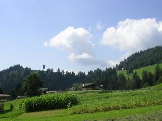 Comodo panoramico tranquillo montagna piano terra, Castelfondo