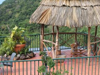 Terrasse près de la piscine