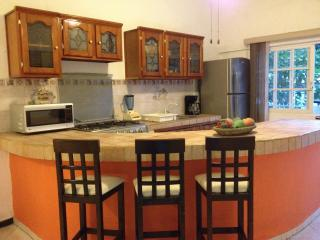 GREAT PLACE!! 2 BEDROOMS 2 BATHROOMS,  OLD TOWN!, Puerto Vallarta