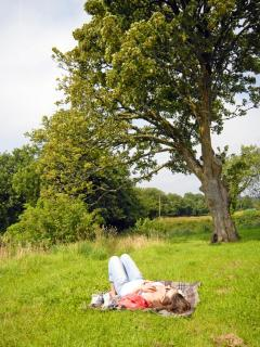 Relaxing on a sunny afternoon in the grounds of Murmur y Ceri