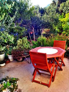 Shared garden and sitting area in shadow of olive trees