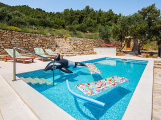 Amazing rustic villa with a pool, Vrbanj