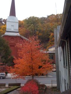 Beautiful Fall tree and gorgeous colors on the mountain