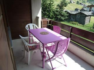 cosy appartment in Zermatt area (Täsch)