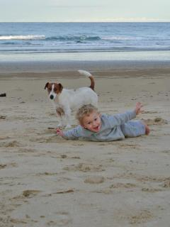 A perfect beach for kids and dogs