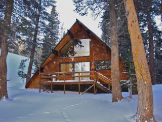 Ski in/Ski out  Slope side cabin - Chalet #4, Mammoth Lakes