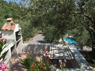 Prepare your BBQ in the shade of a 100 year old olive tree
