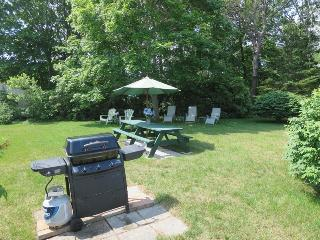 Back Yard with charcoal and gas grill - 6 Breezy Way South Harwich Cape Cod New England Vacation Rentals