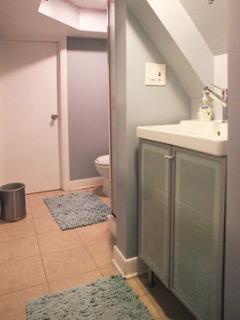Finished Basement Bathroom
