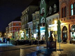 Brasov Apartment in Historic Centre