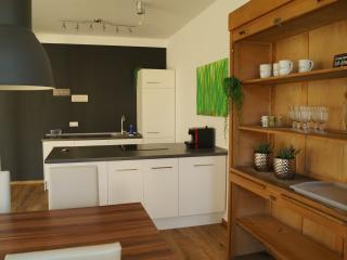 LOFT STYLE 3 Zimmer Apartment + Terrasse