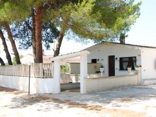 Casa nella campagna salentina - Flat in Salento, Sava