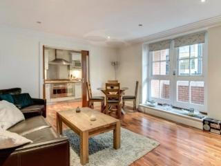 Amazing Sunny  Apartment in Covent Garden, London