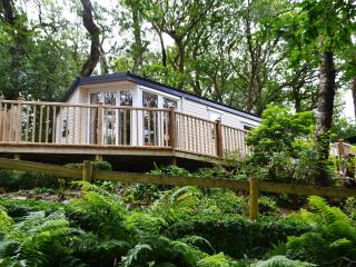 Aberdunant Luxury Caravan with private HOT TUB!, Beddgelert