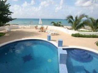 Amazing Location in Cozumel! Oceanfront! Perfect for Divers! (Paradise 2A)