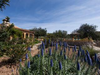Villa Lavanda, Alcúdia