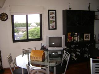 Duplex apartment, Olivos