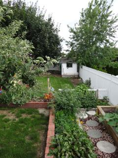 Garden and back yard view from covered patio