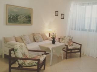 Villa Vinka***- Rosmary App