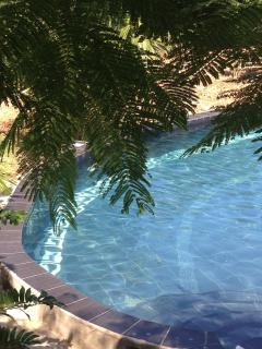 Pool half mooned
