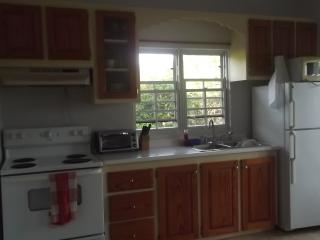 Full fridge, stove, microwave, toaster oven, coffee maker & basic kitchen amenities.