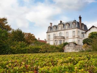 CHATEAU DE MERCUREY (official), Mercurey