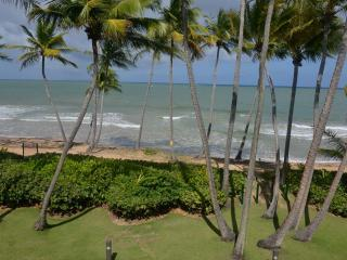 Beach Village, Oceanfront, Incredible View Villa steps to the Beach (BV 101)
