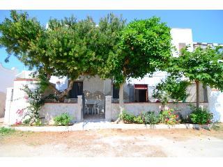 TC024  Casa AMELIA