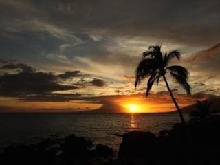 Maui Vista! Reduced rates for last minute bookings