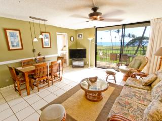 2BR Beachfront; Clean; Great Mountain & Ocean View
