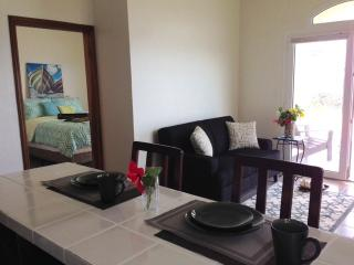 Ocean Front and Pool, 1 bedroom, near West Bay, Flowers Bay