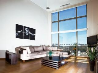 2 Bedroom Loft Apartment in Palermo Hollywood, Buenos Aires