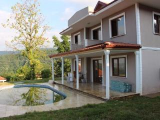 Sapanca Boutique villas with lake manzara view