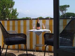 Apartment in Lido di Camaiore Air Conditioned