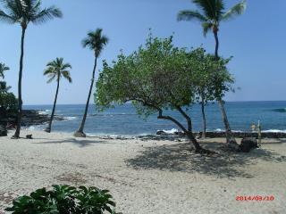 Ocean View Across from Royal Kona Resort!, Kailua-Kona